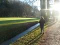 promenade-dans-le-parc